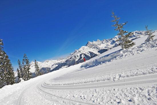 Langlaufen - Winter- & Skiurlaub in Radstadt, Ski amadé