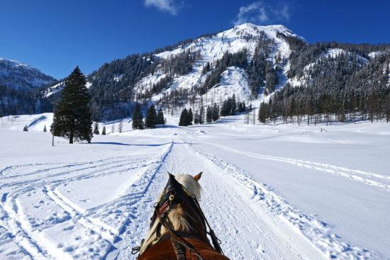 Pferdeschlittenfahrten - Winter- & Skiurlaub in Radstadt, Ski amadé